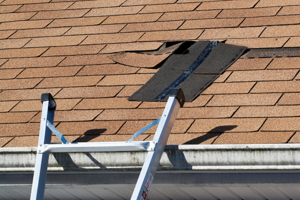 5 REASONS WHY ROOF REPAIR SHOULD BE YOUR TOP HOME IMPROVEMENT PRIORITY